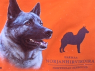Mössa Gråhund Orange